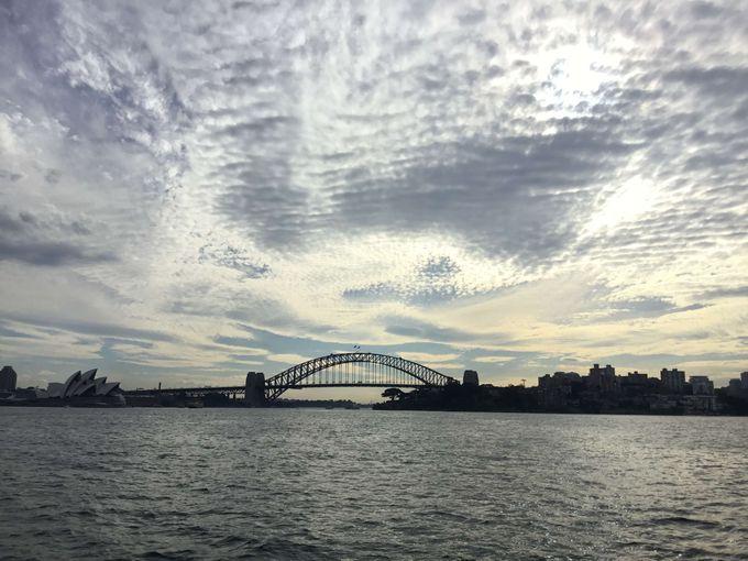 Solo Trip 11日 澳洲 悉尼墨爾本 Part 6 去睇鯨魚啊!!!!!!!!!!!!!!!