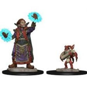 WARDLINGS -  BOY WIZARD WITH IMP