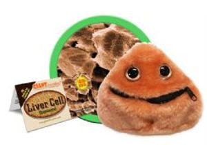 GIANTS MICROBES -  LIVER CELL PLUSH (5