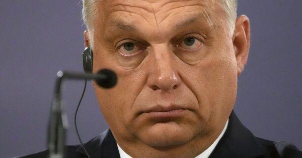 Orbán e i referendum