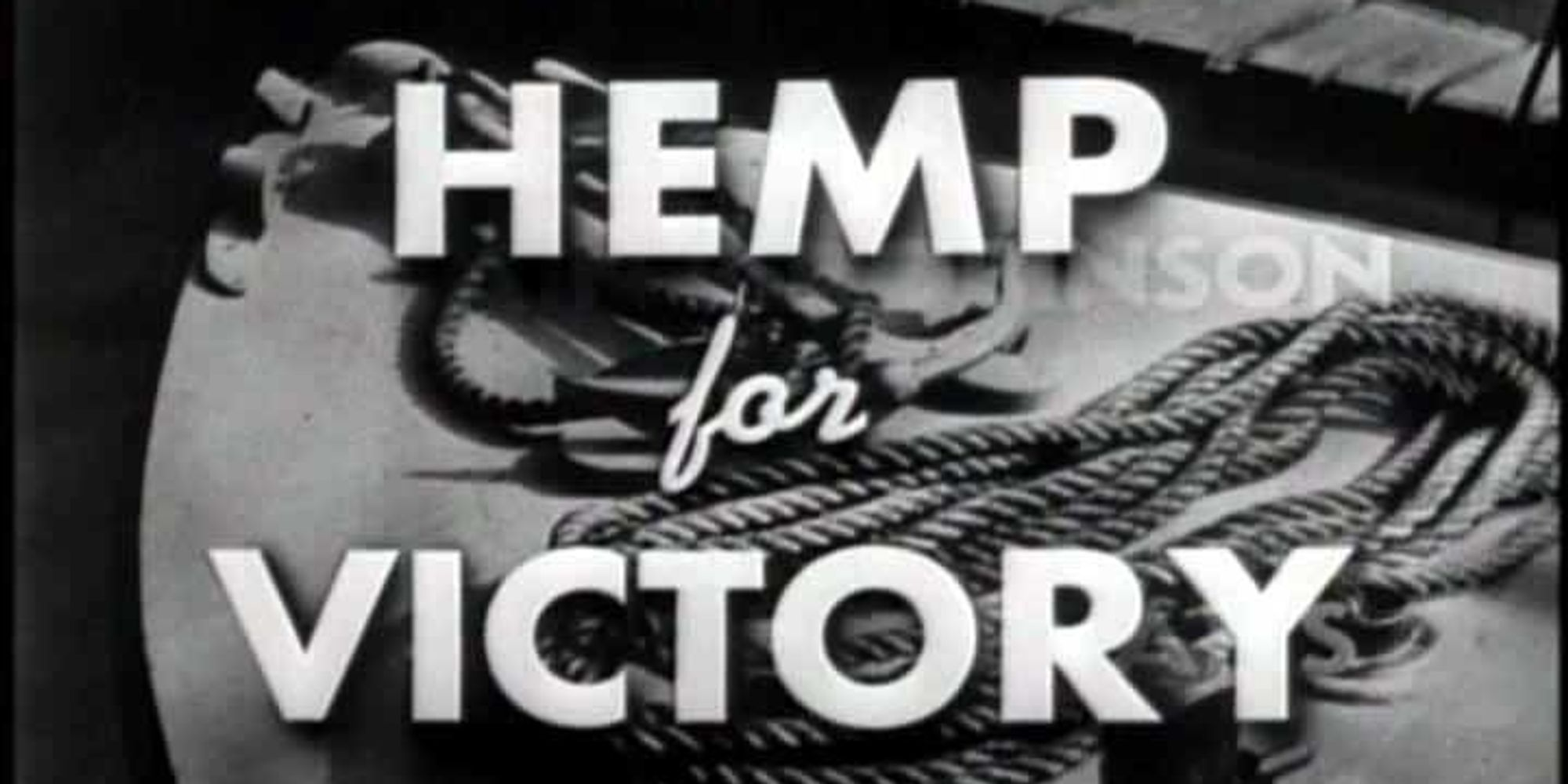 Is America Addicted To Oil Because It Banned Hemp?