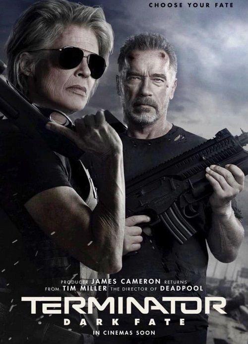 Terminator: Mroczne przeznaczenie / Terminator: Dark Fate (2019)  PLDUB.MD.480p.WEB-DL.x264.DD2.0-HFu / Dubbing.PL