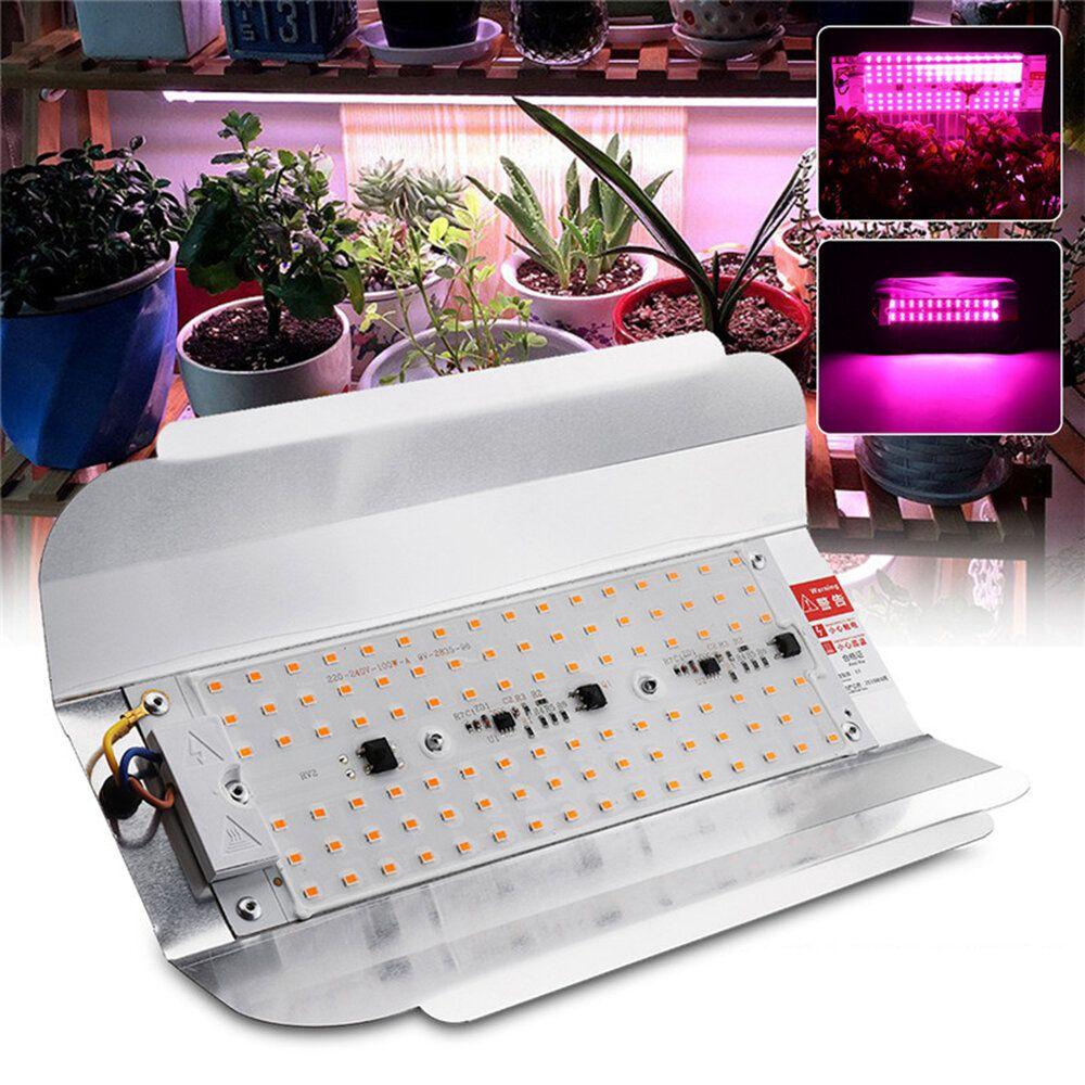 Full Spectrum 50W 100W LED Plant Flower Grow Flood Light Spotlight Outdoor Indoor Lamp AC220V