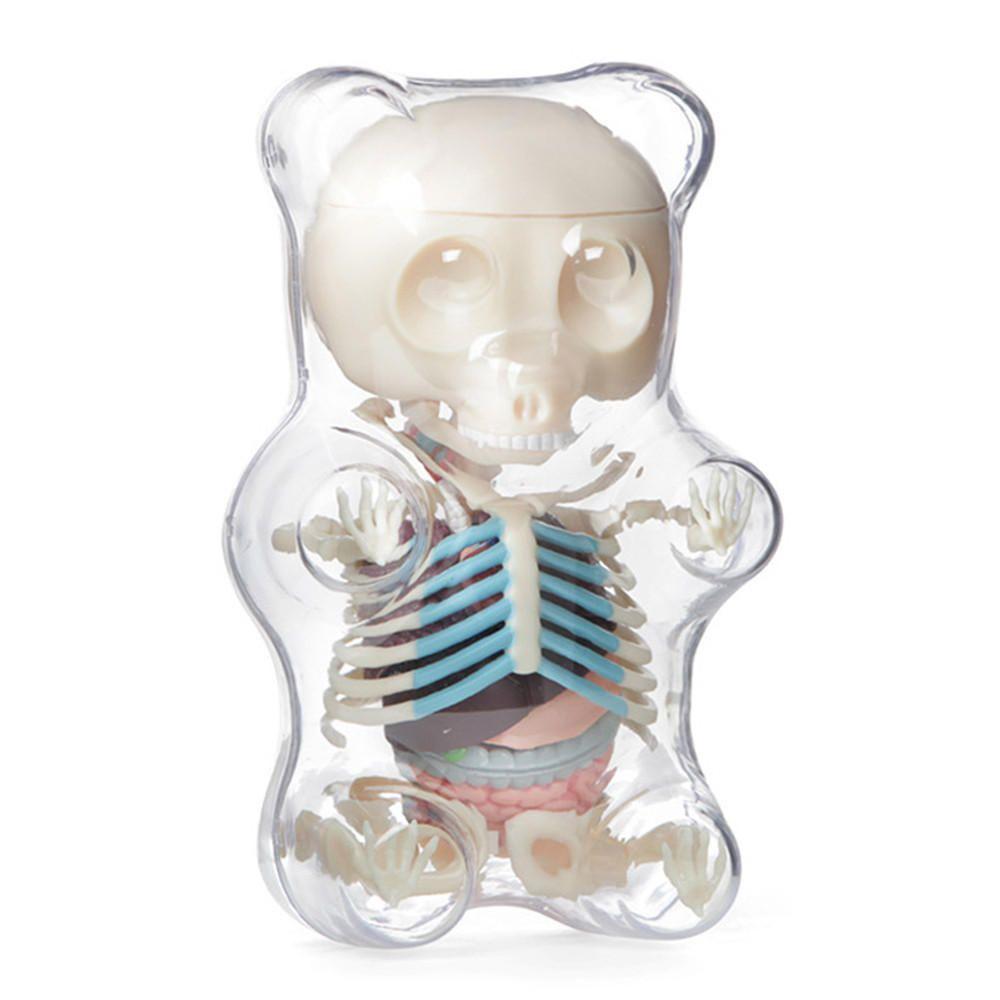 4D MASTER STEM Anatomy Model Gummi Bear Skeleton Anime Assembly Action Figure Gifts Science Animal Model