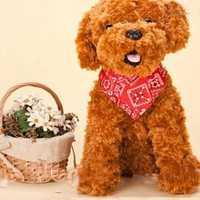 Adjustable Dog Cat Puppy Bandana Scarf Collar Neckerchief Costume