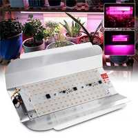 Full Spectrum 50W 100W LED Plant Flower Grow Flood Light Spotlight Outdoor Indoor Lamp AC220V