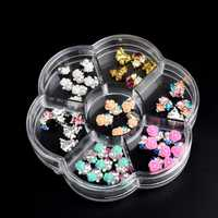 Compartment Empty Storage Case Dired Flower Nail Art Product Earring Jewelry Container Box