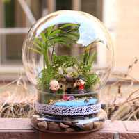 Bulb Shaped DIY Moss Micro Landscape Glass Bottle Succulent Plants Vase Home Decoration