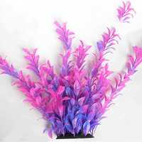 Egrow 1000 PCS Aquatic Water Seeds Aquarium Planting Seeds Fish Tank Deaoration Grass Seeds