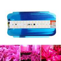 50W 100W Full Spectrum Waterproof IP65 LED Plant Flower Grow Light AC220V