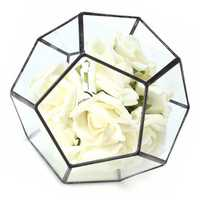 Irregular Glass Geometric Terrarium Box Flower Pot DIY Tabletop Succulent Plant Planter