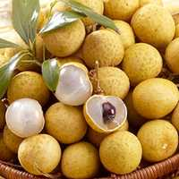 Egrow 4pcs/Bag Longan Seeds Live DRAGON'S EYE Exotic LONGAN Dimocarpus Sweet Tropical FRUIT Tree Seeds