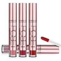 Velvet Matte Lip Gloss Long Lasting Lips Makeup Waterproof Lipstick Liquid Stick