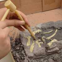 DIY Dinosaur Fossil Diecast Model Toy Kit Vice Saurolophus Styracosaurus Diplodocus Ceratosaurus Spinosaurus