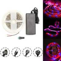 DC12V 5M Red:Blue 3:1 Waterproof 5050 Full Spectrum Grow LED Strip Lights kit for Plant