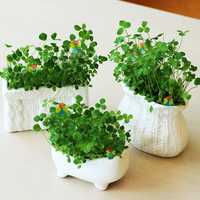 DIY Mini Creative Ceramic Grass Potted Plant Desktop Office Decor