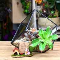 DIY Micro Landscape Cube Greenhouse Glass Succulent Plants Flower Pot