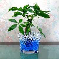 50 Bags Crystal Mud Soil Aqua Gel Water Beads Plant Ball