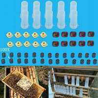 Rearing Cupkit Box Cupularve Tools Bee Keeper Tools Apiculture Bee Tool Set Beekeeping