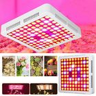 Promotion AC85-265V 300W 2 Kinds Spectrum LED Grow Light Cooler Fan Growing Lamp for Indoor Hydroponic Plant