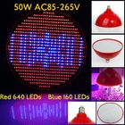 Meilleur prix 50W E27 640 Red 160 Blue Garden Red Plant Growth LED Bulb Greenhouse Plant Seedling Light