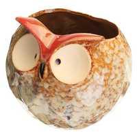 Garden Home Flower Pot Owl Ceramic Crafts Decoration Planter 4.7 Inch Succulent Plants Pot