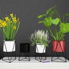 Bon prix Geometric Metal Flower Pot Stand Chic Indoor Garden Plant Holder Display Planter