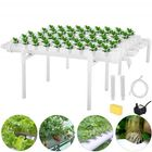 Acheter au meilleur prix 54 Holes 6 Pipes Horizontal Piping Site Grow Kit Flow DWC Deep Water Culture Planting Hydroponic System