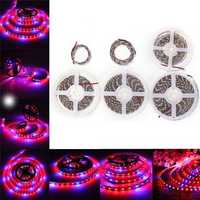 0.5M/1M/2M/3M/4M/5M 5050SMD Waterproof Red:Blue 3:1 Full Spectrum Grow LED Strip Light DC12V