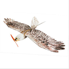 Offres Flash Dancing Wings Hobby DW Eagle EPP Mini Slow Flyer 1200mm Wingspan RC Airplane KIT