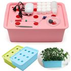 Discount pas cher 220V Hydroponic System Kit 9 Holes DWC Aerobic Soilless Cultivation Indoor Water Planting Box