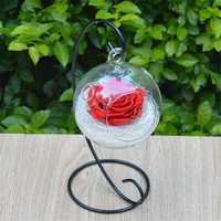 Clear Hanging Glass Ball Vase Flower Plant Pot Terrarium Container Decoration Decorative Hardware