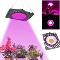 1000W Full Spectrum LED Grow Light Veg Seed Greenhouse Plant Lamp Super Cooling