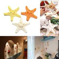 Natural Artificial Starfish Ornament Accessories Wedding Decoration