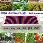 Les plus populaires 240W Gardening Full Spectrum LED Plant Grow Light Greenhouse Plant Seedling Lamp