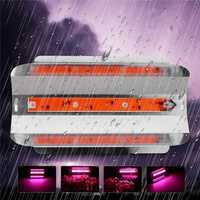30W/50W/80W Full Spetrum LED Floodlight Waterproof COB LED Grow Light DIY Led Chip AC110V/220V