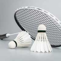 Xiaomi Dooot 12Pcs Badminton Duck Feather Shuttlecock Outdoor Camping Sports Badminton Accessories