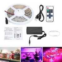 DC12V 5M 5050 Red:Blue 5:1 Full Spectrum LED Grow Strip Hydroponic Plant Light Kit + Power Adapter