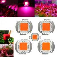 10W 20W 30W 50W 100W 380NM-840NM Full Spectrum High Power LED Chip Grow Light