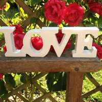 Romantic Wood Standing LOVE Letter Wedding Party Decoration Prop