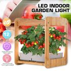 Acheter au meilleur prix Indoor Gardening Growth Light With Bamboo Frame Plant Grow Box Cabinet Hydroponic Planter Water Hydroponic Garden System Kit
