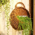 Meilleurs prix Flower Planter Wall Hanging Basket Ornamental Vases Garden Outdoor Indoor Holder Home Decoration