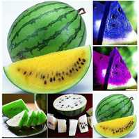 20Pcs Watermelon Multi-color Flesh Magic Garden Seeds Summer Cool Fruit Garden Farm Landscape