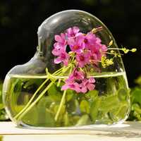 Heart-shaped Flower Hydroponic Plants Glass Vase Home Party Decor