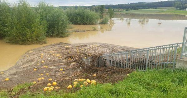 Viele Millionen für den Schutz vor Hochwasser