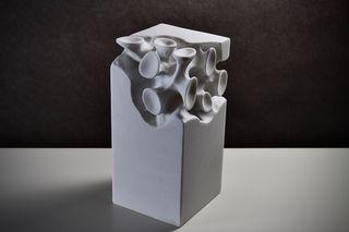 Virus in a Box