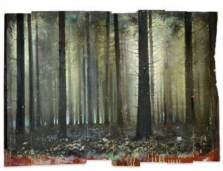 Wald-09-20