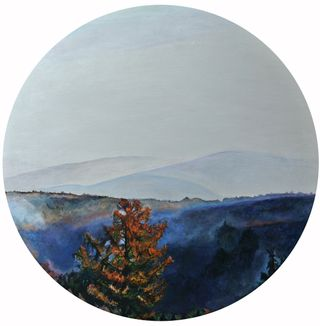 Morgennebe, Fokus on Landscape