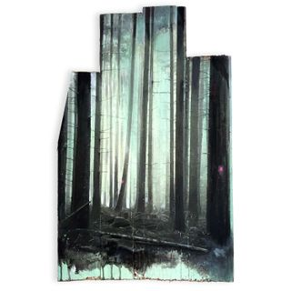 Wald-16-20