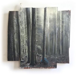 Wald-14-21